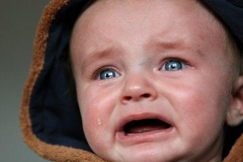 lade babyer græde