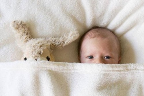 Baby under dyne med bamse. En nyfødt's syn
