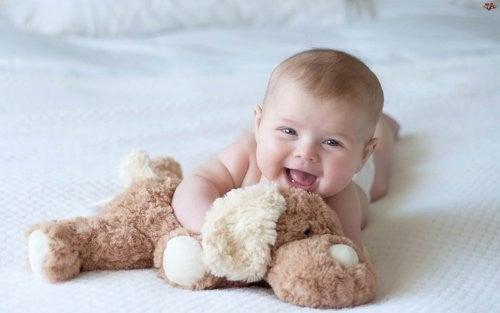 baby krammer bamse