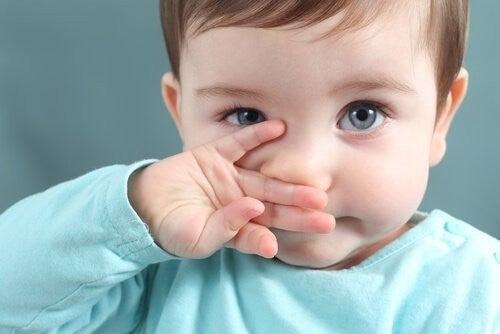 barn tørrer næse