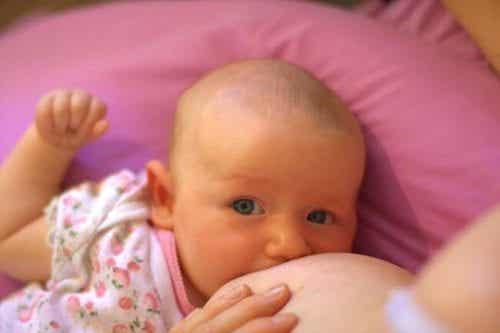 Vigtigheden af jern i en babys kost i forhold til dens udvikling