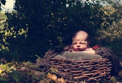 baby ligger i en rede udenfor