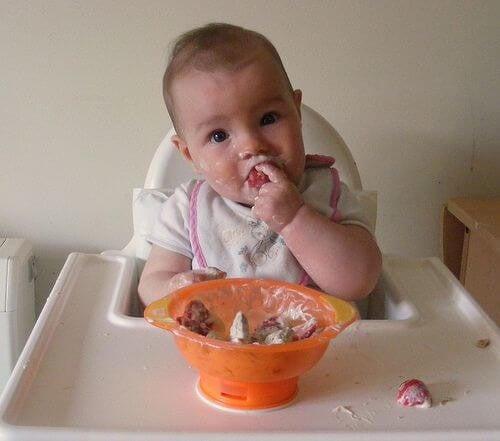 Overgangsmad: Forslag og Tips Til Din Baby