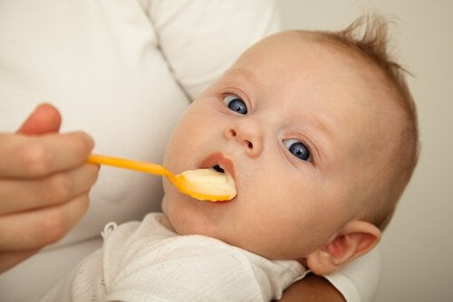 Hvordan og hvornår skal din baby starte med fast føde