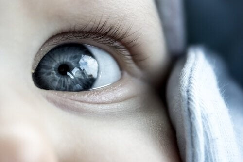 Baby med grå øjne