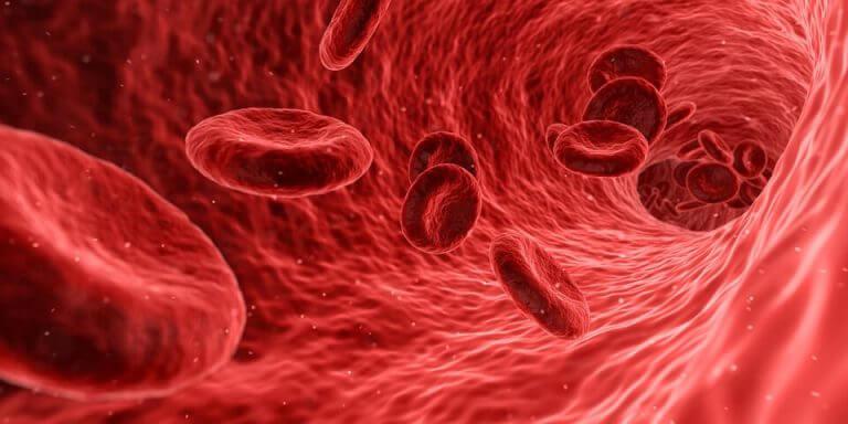 Røde blodceller