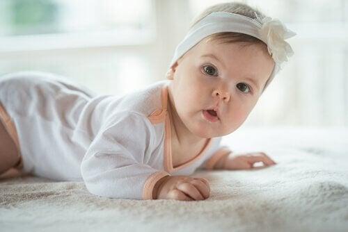 Lille baby kravler