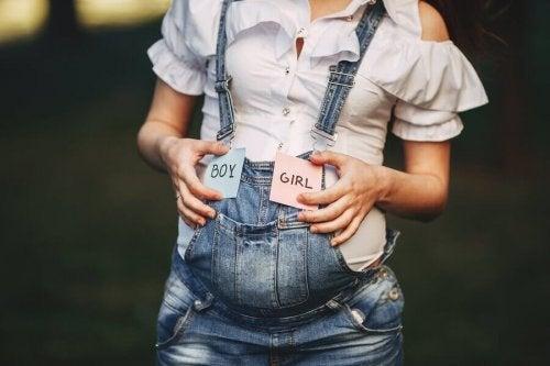 Hvad afgør et barns køn?