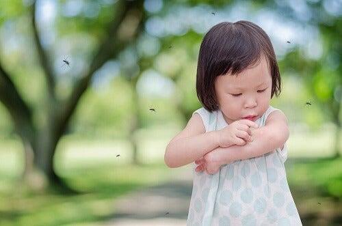 Hvorfor bliver mit barn altid stukket af myg?