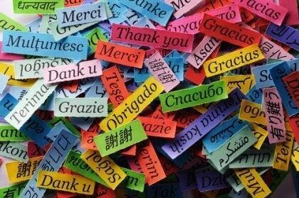 tak på forskellige sprog