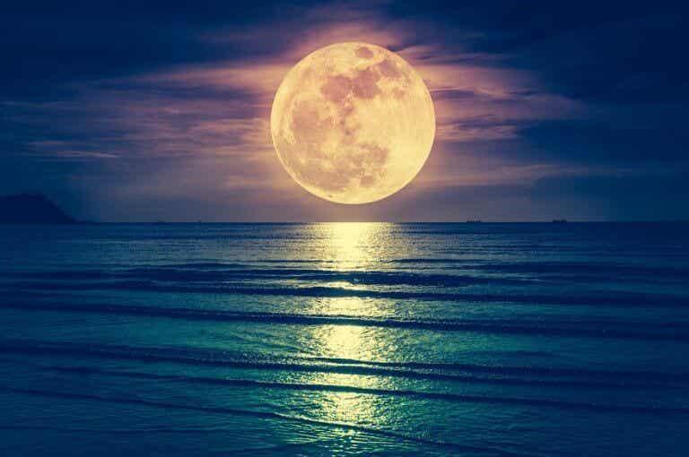 Har månen indflydelse på fødsler?