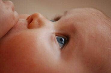 Babyens gener: Hvad har indflydelse på disse?