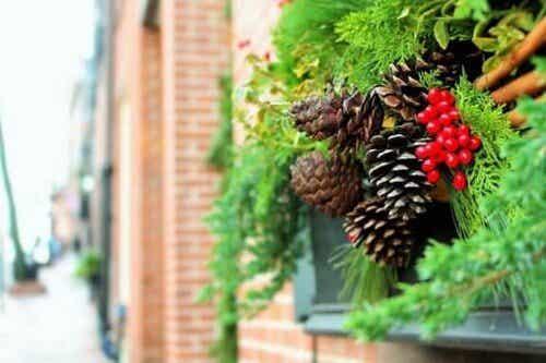 Julepynt i haven: 6 gode idéer