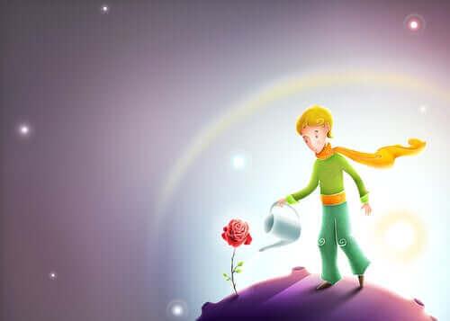 dreng der vander en rose