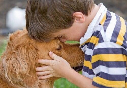 Fordele ved at have kæledyr derhjemme