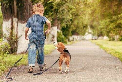 dreng der går tur med hund