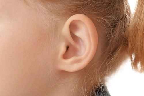 nærbillede af barns øre