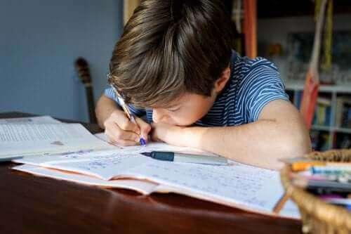 dreng der laver lektier