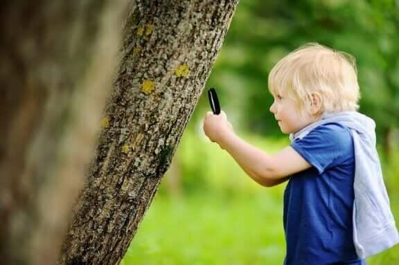 Udendørs uddannelse: Dreng med lup lærer udenfor.