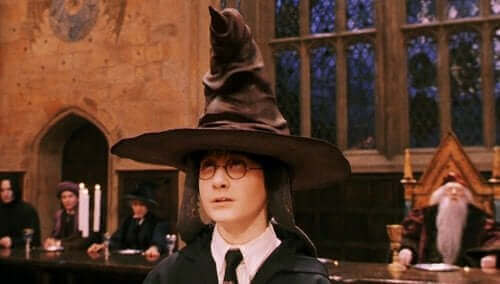 Harry med sorteringshat på hovedet