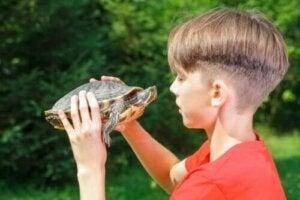Skildpadde-teknikken: Tricks til at forbedre selvværdet