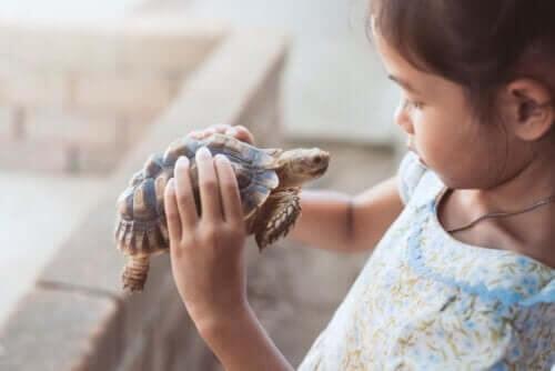 Skildpadde-teknikken kan gøre børns selvværd