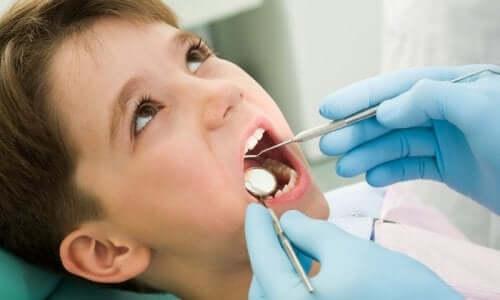 Sådan passer du på dit barns mælketænder: Dreng til tandkontrol.