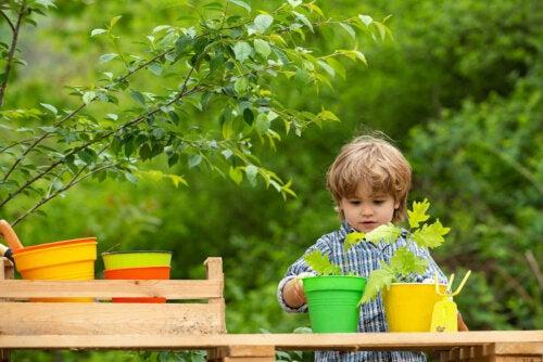lille dreng der planter