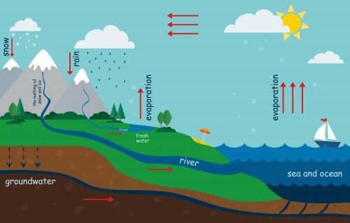 Hvordan man kan forklare vandets cyklus for børn