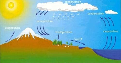 animation af vandets cyklus