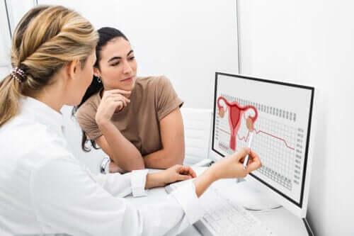 Ægløsningens rolle i kvindelig reproduktion