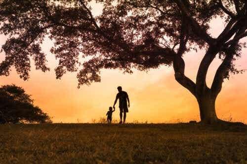 Følelsernes træ: Hvad du bør vide
